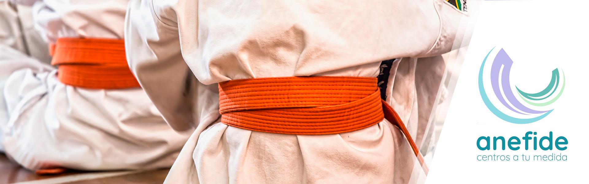 Anefide-karate