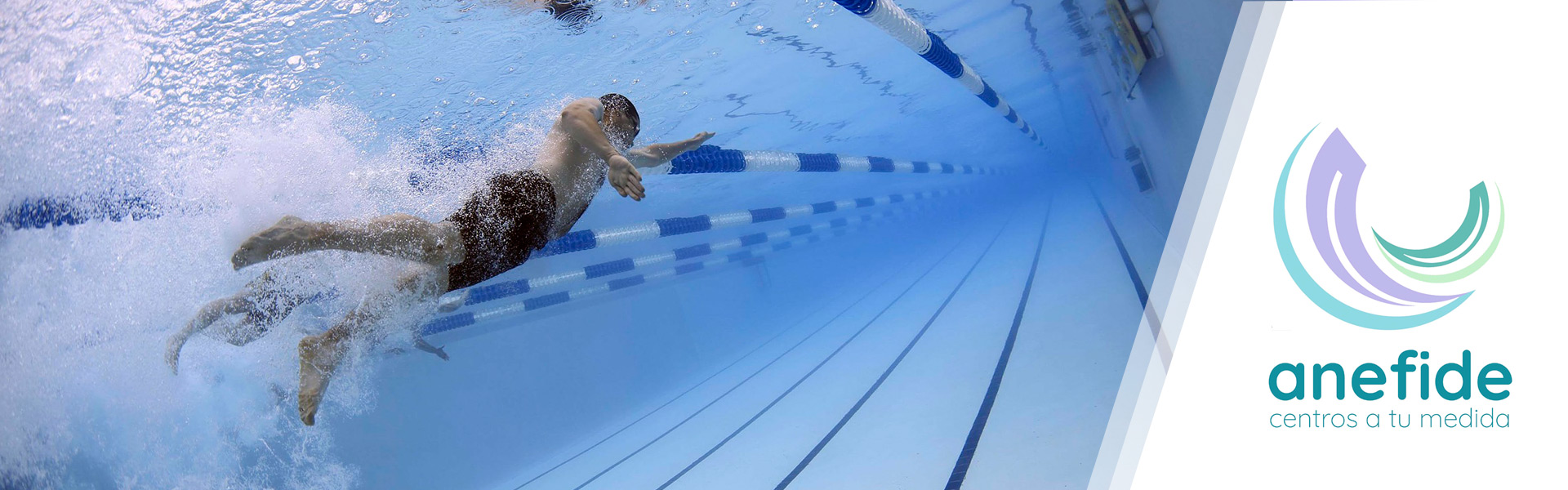 anefide-natacion